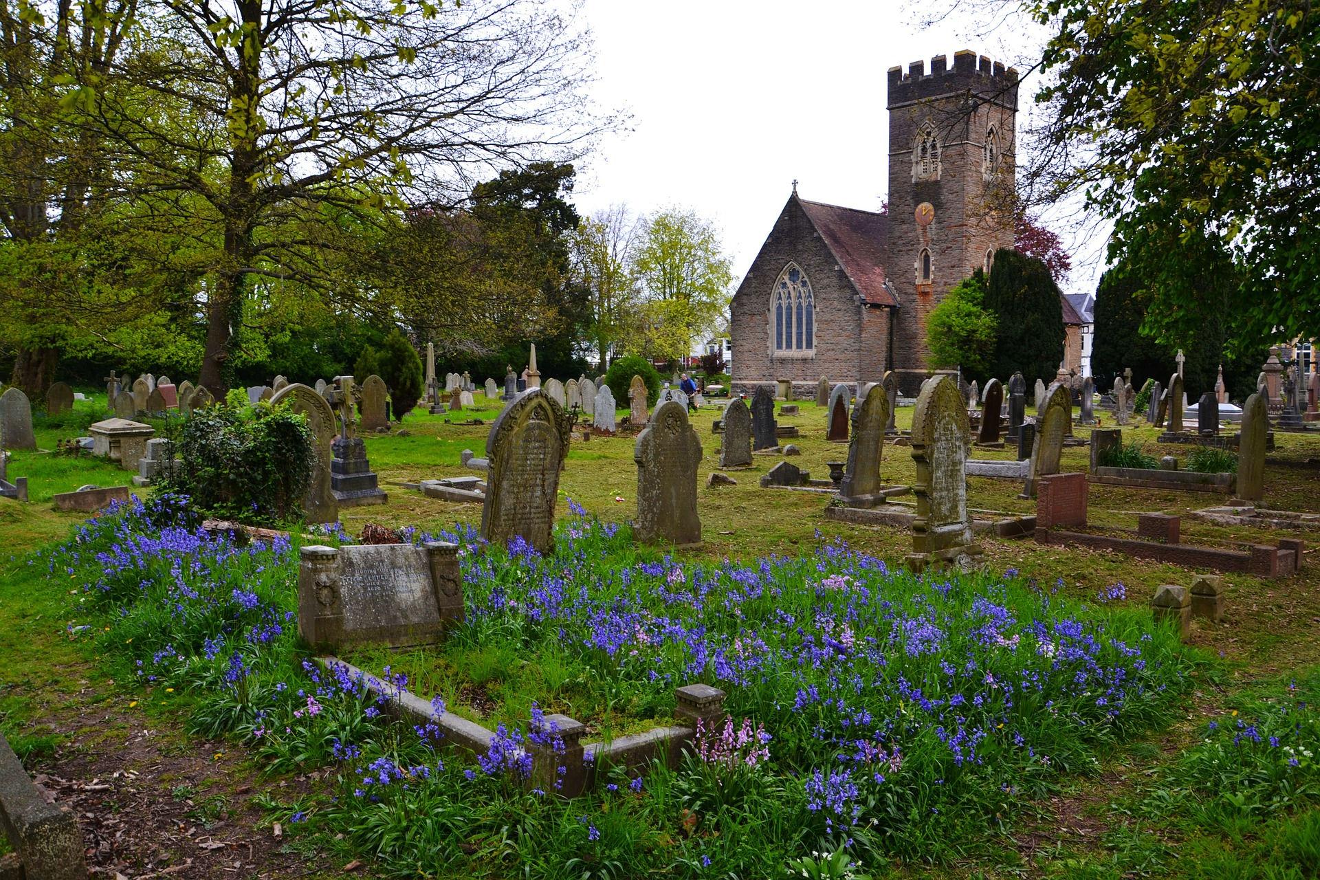 Churchyard biodiversity. Photo credit: terimakasih0 on Pixabay.