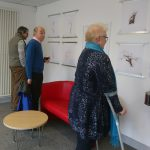 "Private viewing of ""Green