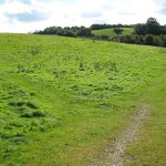 Dog-walker path in Ludwell Valley Park