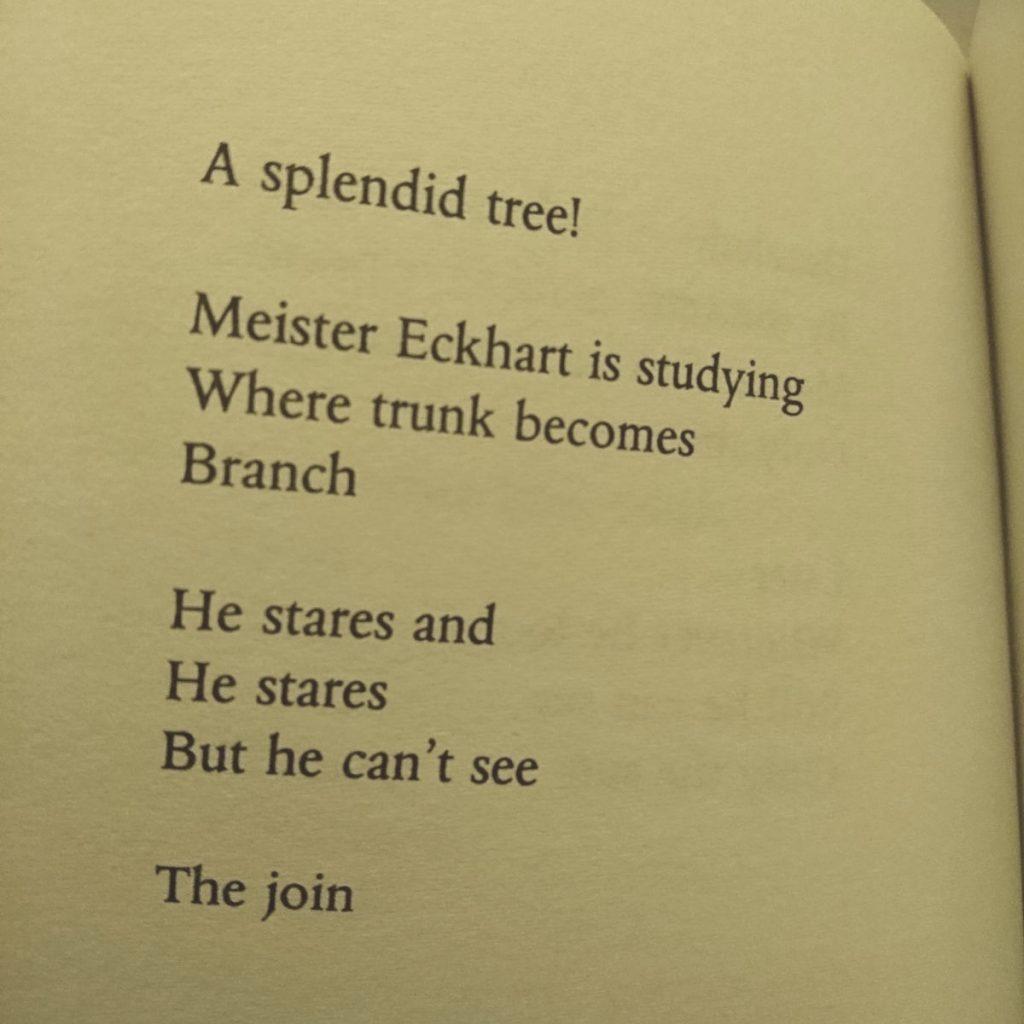 from Echoes of Eckhart, Richard Skinner