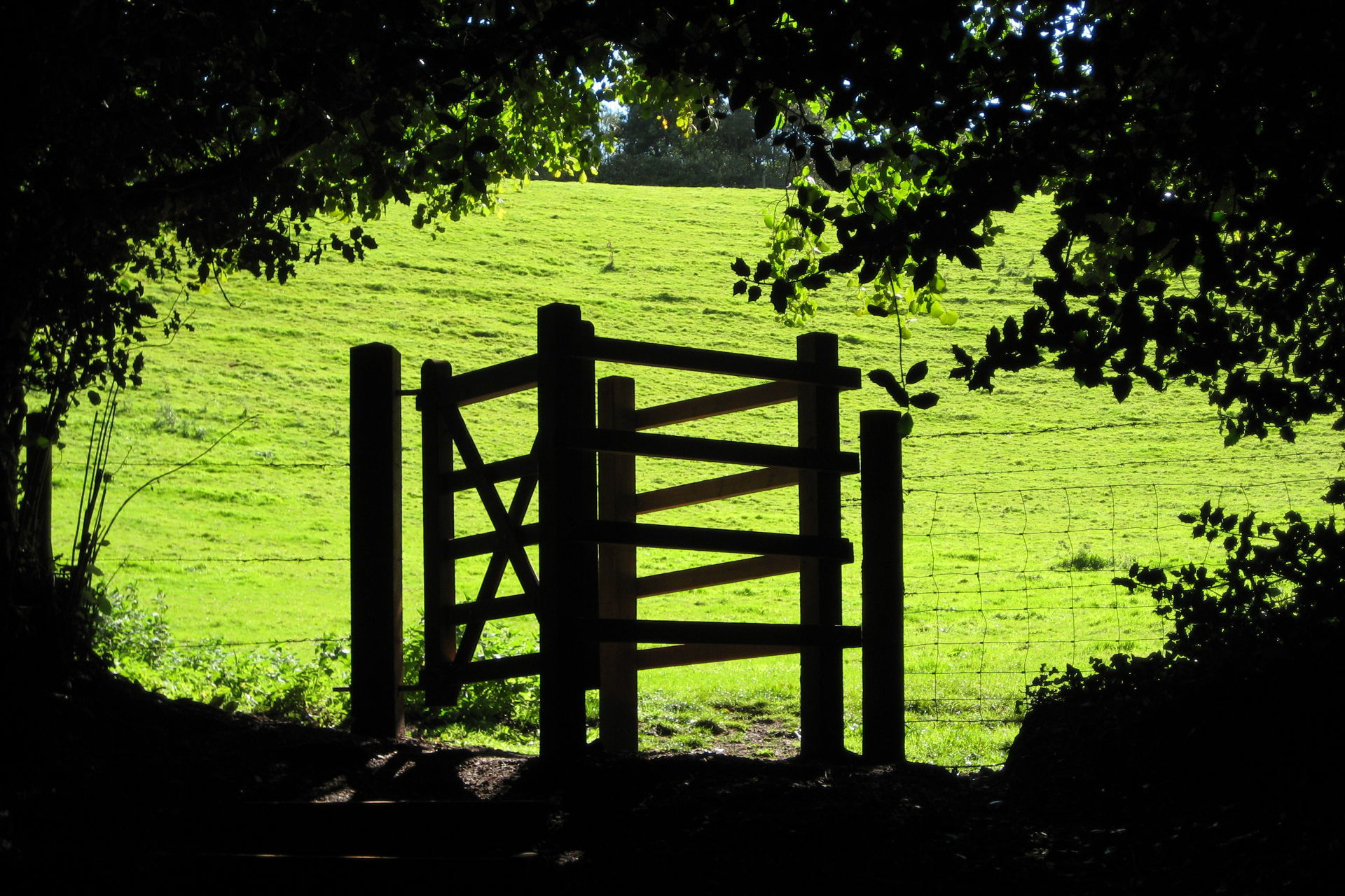Kissing gate in Ludwell Valley Park