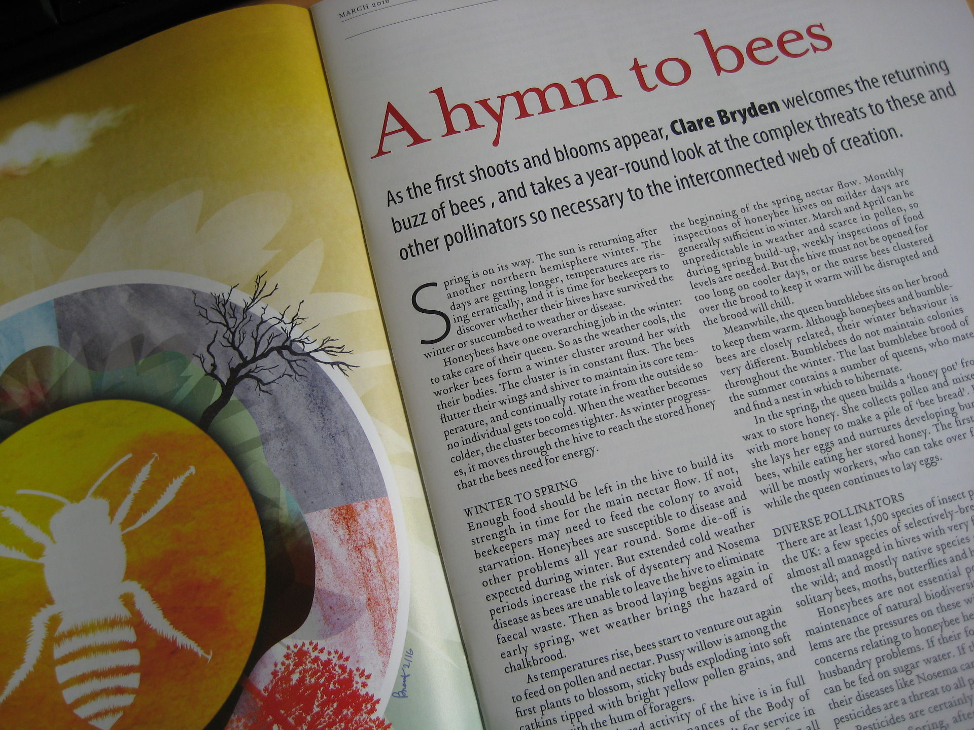 A hymn to bees, written for Third Way magazine