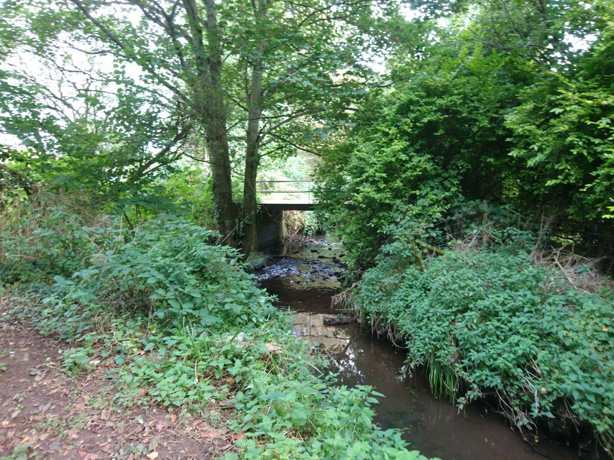 Bridge to Swan Cottage