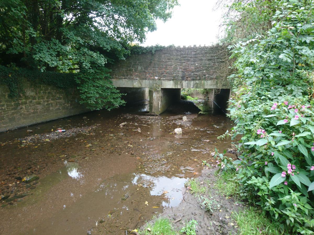 ...and upstream litter