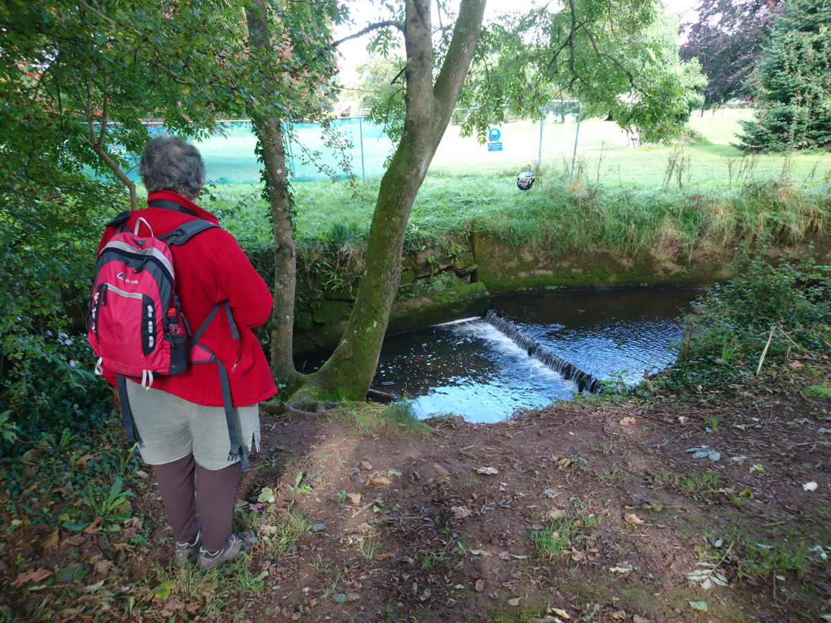 """""""It's almost rural, compared..."""" ...with the Wandle!"""